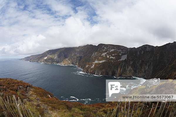 Klippen von Slieve League  County Donegal  Irland  Europa