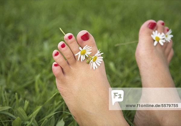 Mädchenfüße mit Gänseblümchen