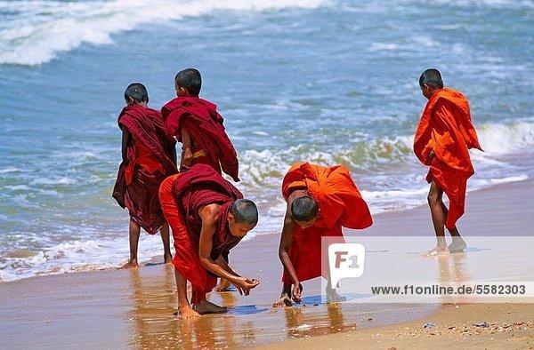 Asien  Südostasien  Sri Lanka