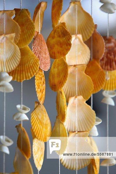 Muschel Dekoration Thailand