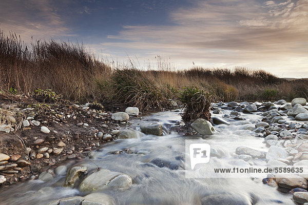 Kilve Pill on a late January evening  looking south  upstream of the River Holford  following a period of heavy rain  Somerset  England  United Kingdom  Europe