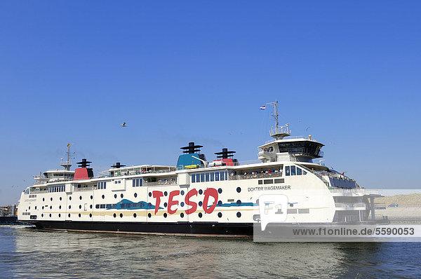 Fährschiff im Hafen von Het Horntje  Texel  Niederlande  Europa