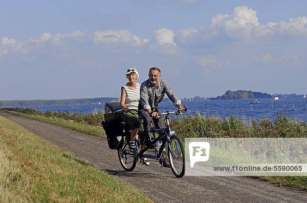 Couple riding a tandem bicycle at Lake Veluwe  Flevoland  The Netherlands  Europe