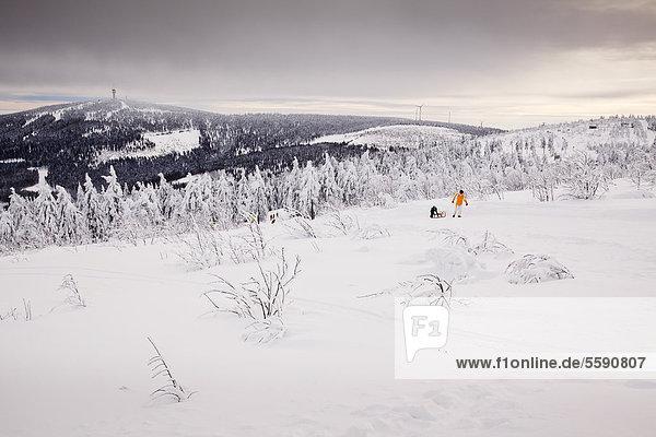 Blick vom Fichtelberg im Winter  Oberwiesenthal  Sachsen  Deutschland  Europa