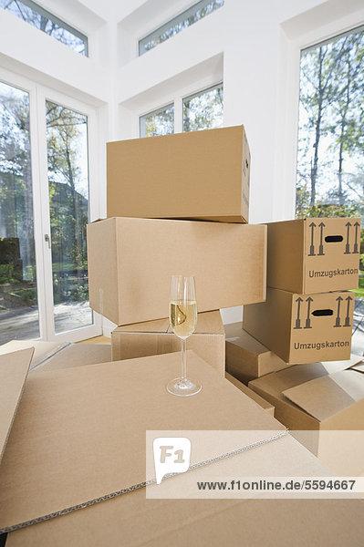 Deutschland  Bayern  Grobenzell  Kartonagen im Wohnzimmer des Hauses