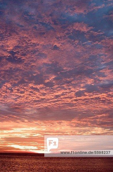 Strand  Sonnenuntergang  über  Mexiko  Florida  Venedig