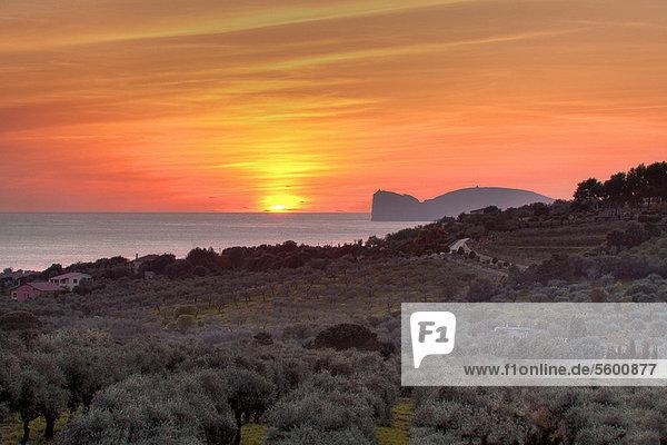Ländliches Motiv  ländliche Motive  Wasser  Sonnenuntergang  Landschaft  über