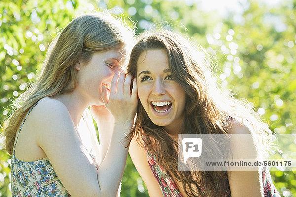 Außenaufnahme  Jugendlicher  flüstern  Mädchen  freie Natur