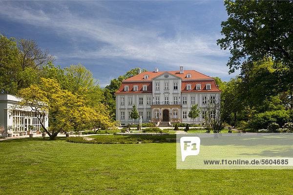 Schloss und Park Güldengossa bei Leipzig  Sachsen  Deutschland  Europa