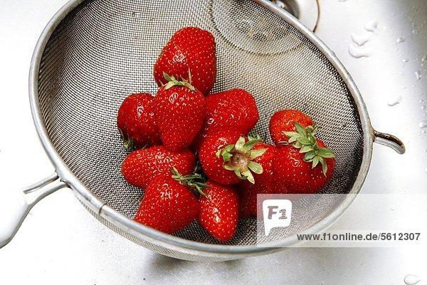 Sieb mit Erdbeeren im Waschbecken Sieb mit Erdbeeren im Waschbecken