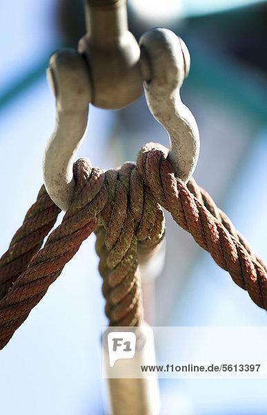 Karabinerhaken mit Seilen