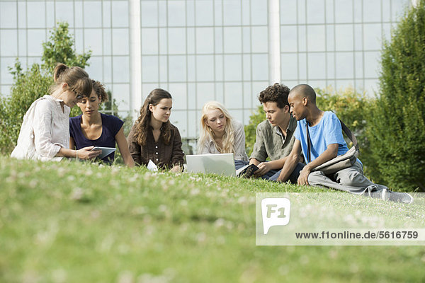 University students studying on grass  low angle veiw