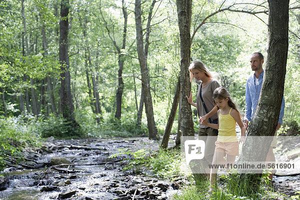 Familienwandern entlang des Baches im Wald