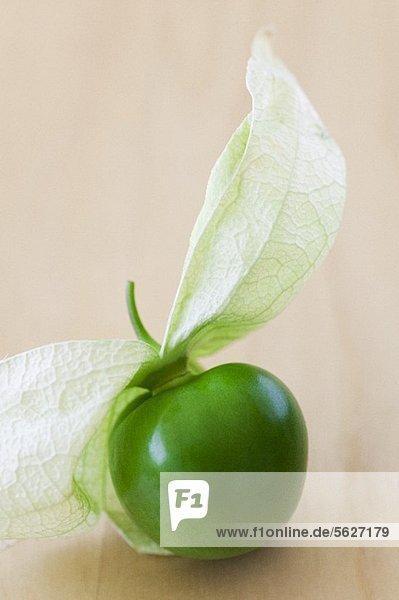 Tomatillo mit Fruchthülle (Grüne mexikanische Tomate) Tomatillo mit Fruchthülle (Grüne mexikanische Tomate)