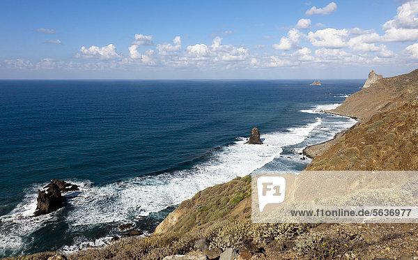 Coast near Benijo  Anaga Mountains  Anaga  Tenerife  northeastern coast  Canary Islands  Spain  Europe