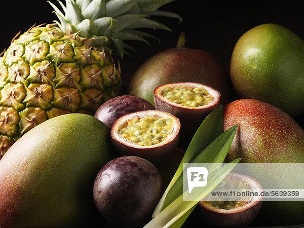 Tropische Früchte nestled zusammen