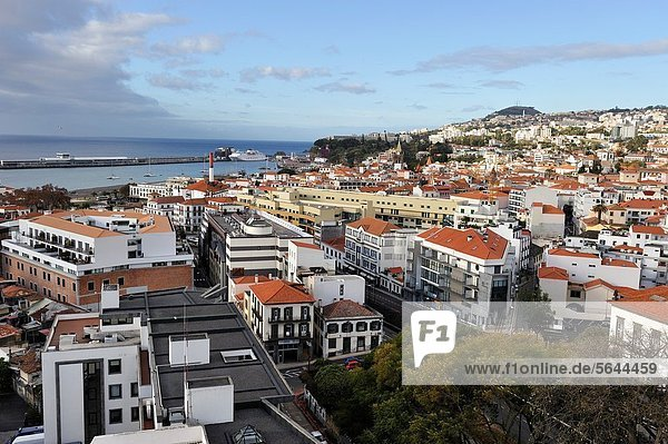 aerial view from the aerial tramway  Funchal  Madeira island  Atlantic Ocean  Portugal
