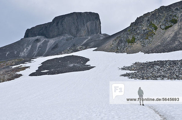 Ein Wanderer auf Black Tusk  Garibaldi Park  British Columbia  Kanada