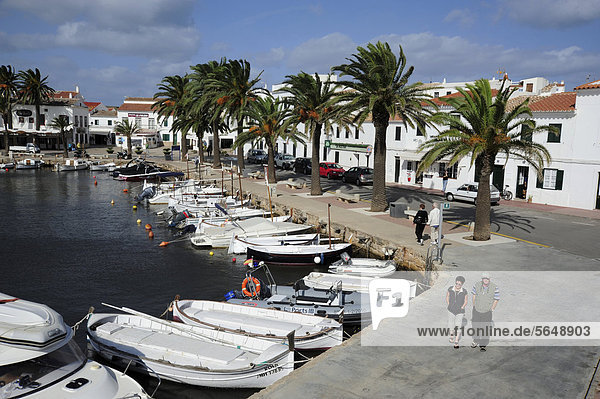 White fishing boats and palm trees in the harbour of Fornells  Minorca  Menorca  Balearic Islands  Mediterranean Sea  Spain  Europe