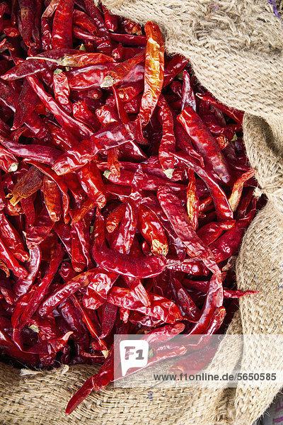 Indien  Kerala  Getrocknetes rotes Chilly im Sack auf dem Markt  Nahaufnahme