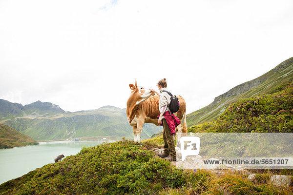 Frau streicheln einer Kuh  Alpen  Tirol  Österreich Frau streicheln einer Kuh, Alpen, Tirol, Österreich