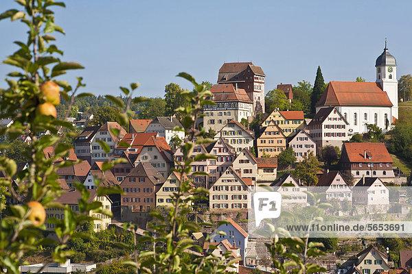Deutschland  Baden Württemberg  Altensteig  Stadtansicht