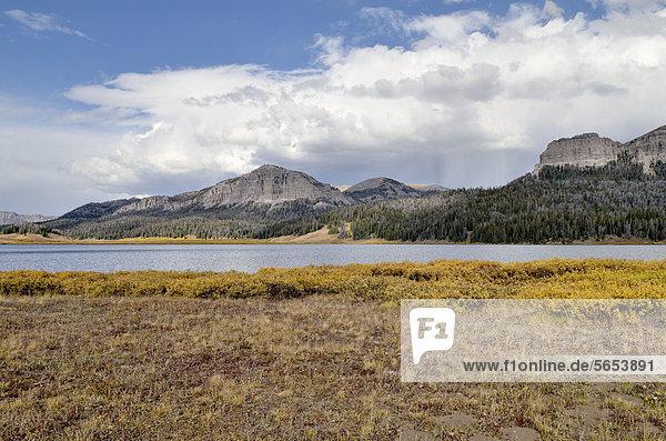 Brooks Lake  Shoshone Wilderness Area  Wyoming  USA