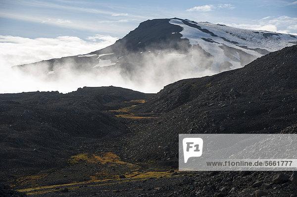 Lavafeld  Gletscherzunge Sk·lafellsjökull  Gletscher Vatnajökull  Austurland  Ost-Island  Island  Europa