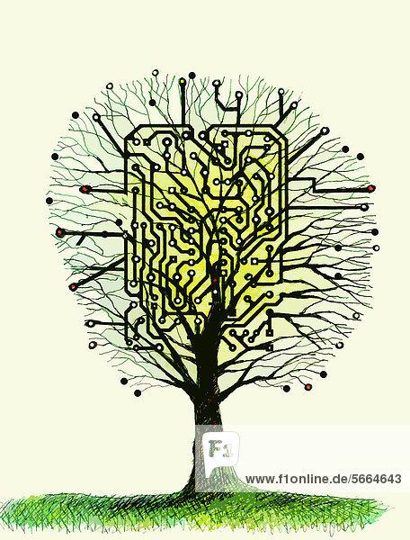 Baum mit einer Platine