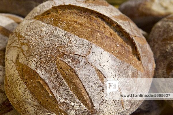 Frisches knuspriges Brot