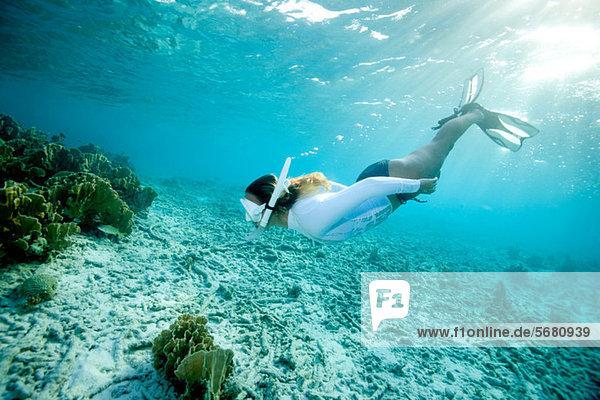 Schnorchler nähert sich dem Korallenriff