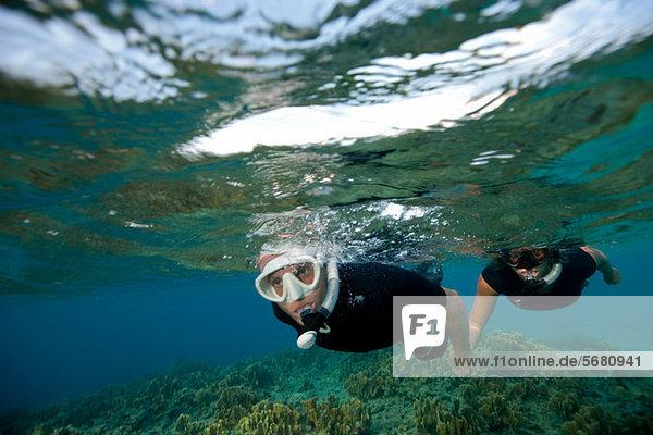 Paaransichten Korallenriff