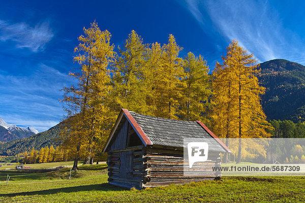 Herbstlandschaft mit Heuschober in Nassereith  Österreich