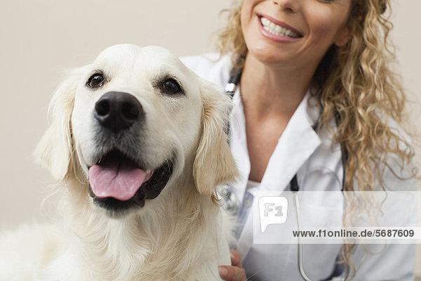 Tierarzt Streichelhund im Büro
