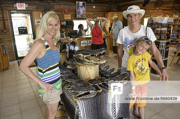 American alligators or gators (Alligator mississippiensis) on sale as souvenirs  Billie Swamp Critter Show  Big Cypress  Seminole-Country  Everglades  Florida  USA