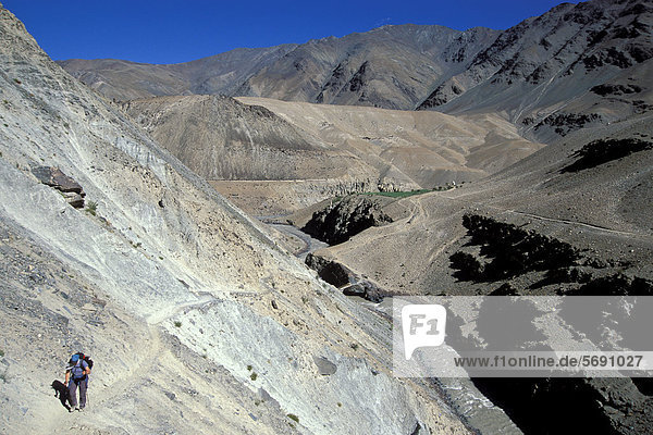 Frau wandert durch wüstenartige Landschaft  bei Purni  Zanskar  Ladakh  indischer Himalaya  Jammu und Kaschmir  Nordindien  Indien  Asien