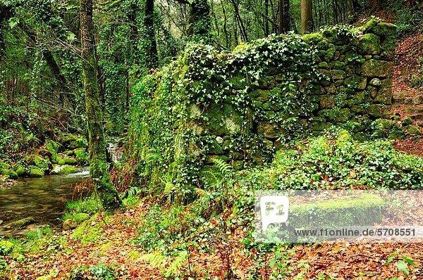 Wassermühle antik Galicien Spanien