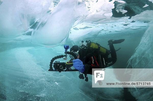 Underwater photographer  diver  ice-diving  Lake Baikal  Olkhon island  Siberia  Russia  Eurasia