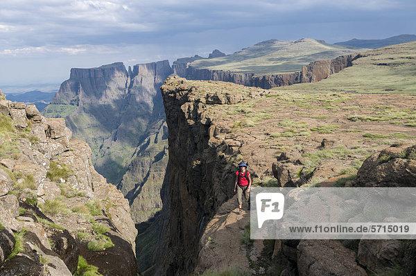 Frau auf dem Plateau  Devil's Tooth  Sentinel Hiking Trail  Wanderweg  Drakensberge  KwaZulu-Natal  Südafrika  Afrika
