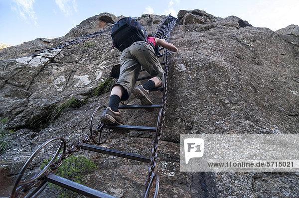 Frau auf der Kletterleiter am Felsen  Sentinel Hiking Trail  Wanderweg  Drakensberge  KwaZulu-Natal  Südafrika  Afrika