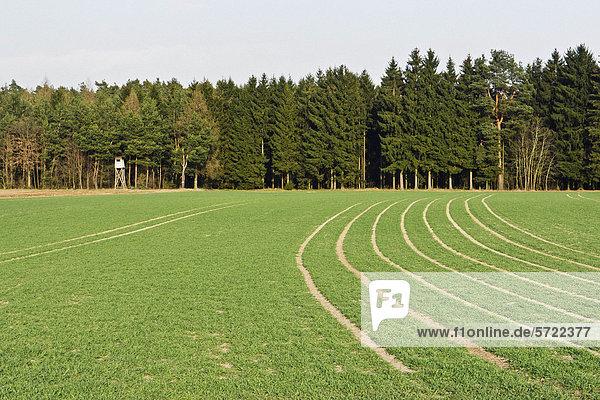 Deutschland  Bayern  Blick auf Felder und Wald