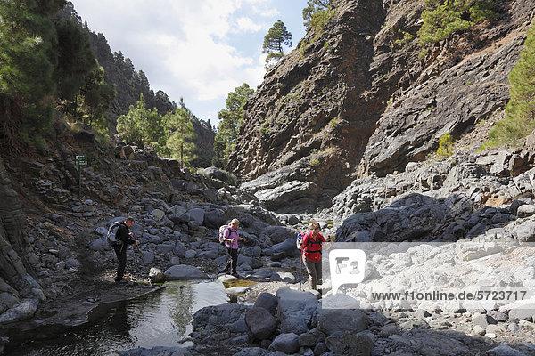 Spanien  La Palma  Wandern im Nationalpark Caldera de Taburiente
