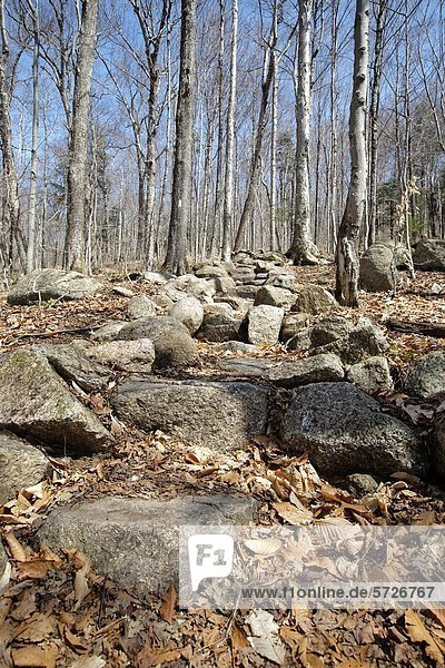 Rock steps along the Appalachian Trail Liberty Spring Trail in the White Mountains  New Hampshire USA