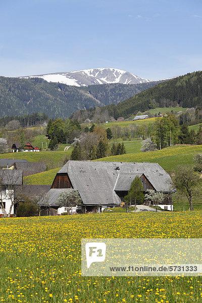 Puchschachen near Knittelfeld  Upper Styria  Styria  Austria  Europe  PublicGround