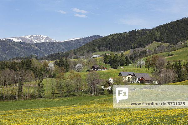 Puchschachen near Knittelfeld  Upper Styria  Styria  Austria  Europe