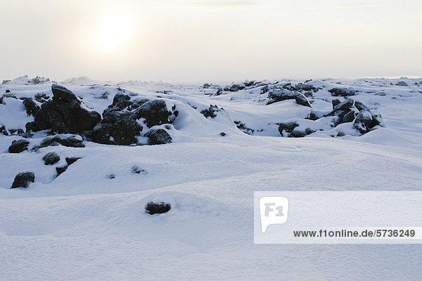 Vulkangestein mit Schnee bedeckt  Halbinsel Reykjanes  Island