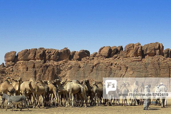 Pinnacle Valley  Ennedi Region  Tschad