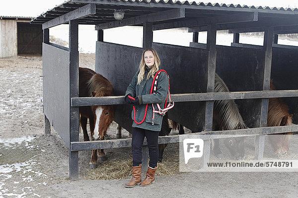 Pferdestall  Frau  Fürsorglichkeit