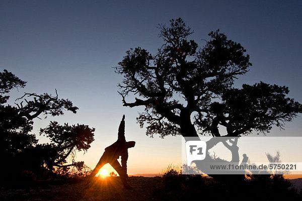 Mann bei Sonnenaufgang im Death Valley National Park  Kalifornien  USA