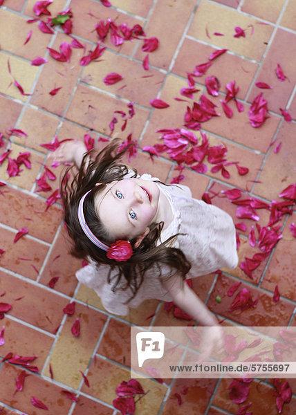 Dreijähriges Mädchen tanzt auf roten Blütenblättern  von oben Dreijähriges Mädchen tanzt auf roten Blütenblättern, von oben